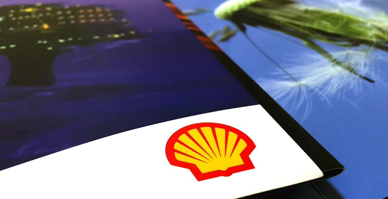 SEO website promotion Shell